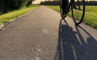 Fietspad tussen Steenwijksmoer en Dalerpeel verlicht